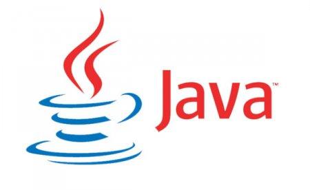 Видеоигра обучит школьников основам программирования на Java