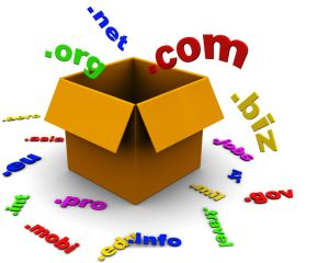 Выбор доменного имени